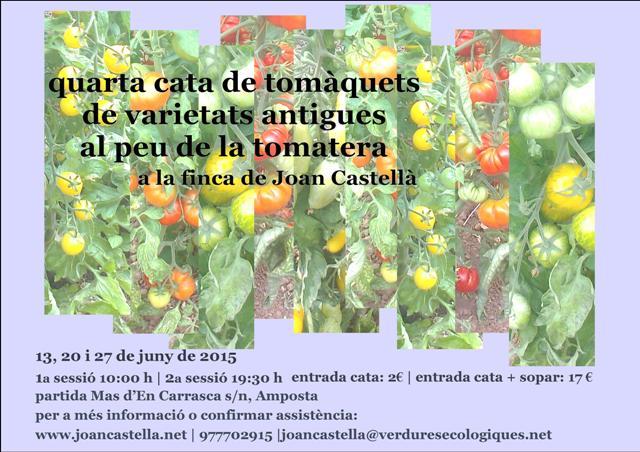 Verdures Ecològiques Joan Castellà > <b>COM ESTÀ L´HORT</b> > 4a Cata de tomàquets de varietats antigues al peu de la tomatera