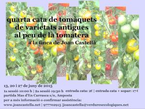 4a Cata de tomàquets de varietats antigues al peu de la tomatera