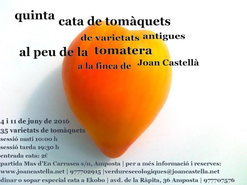 Verdures ecològiques Joan Castellà > <b>EL HUERTO</b> > 5a Cata de tomates de variedades antiguas al pie de las tomateras
