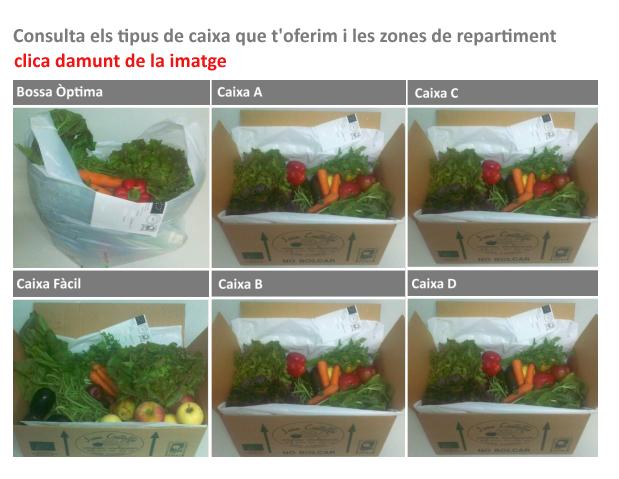 Verdures Ecològiques Joan Castellà > <b>SERVEI A DOMICILI</b> > Servei a domicili