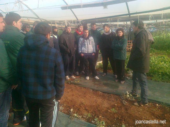 Verdures Ecològiques Joan Castellà > <b>NOTÍCIES</b> > Aquest dimecres 23 de gener 2013 hem tingut la visita dels alumnes de l´Escola Agrària d´Amposta